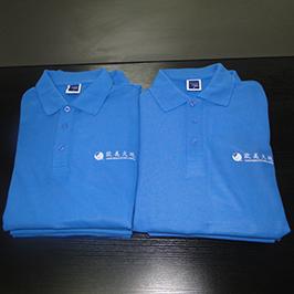 એ 3 ટી-શર્ટ પ્રિન્ટર WER-E2000T દ્વારા પોલો શર્ટ કસ્ટમાઇઝ્ડ પ્રિન્ટિંગ નમૂના